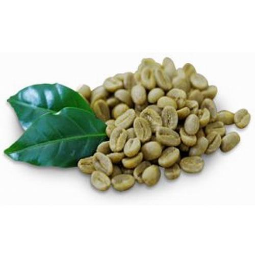 50x Café Vert compatible Espresso Point